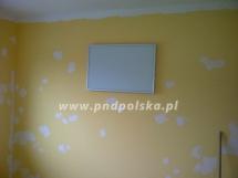panele-First-333.jpg